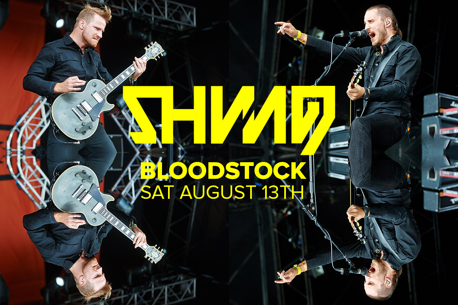 Bloodstock announcement Shining_V3_Saturday